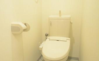 嬉しいウォシュレットトイレです。棚があり便利♪