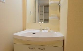 シャンプードレッサー※室内写真は同マンション内の301号室のものです。