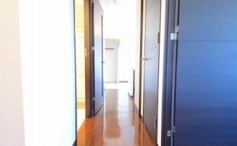 玄関 ※同マンション内の別のお部屋のものです。参考としてご覧ください。