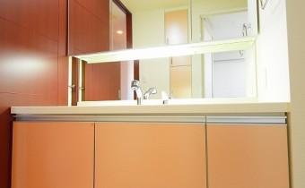 シャンプードレッサー ※室内写真は同マンション内の606号室のものです。