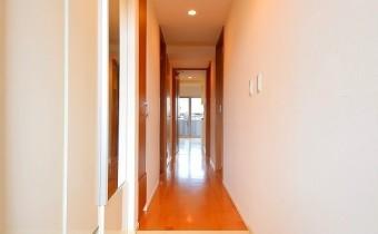 玄関 ※室内写真は208号室のものです。