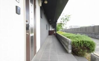玄関:自転車置場やちょっとした荷物スペースとして使えます♪