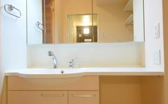 独立洗面台 鏡裏にたっぷり収納できます
