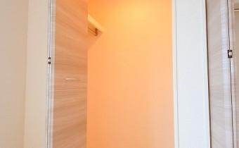 Room4.5のクローゼット2
