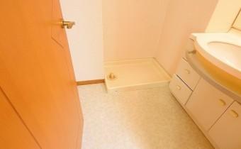 脱衣所 ※室内写真は同マンション内の301号室のものです。