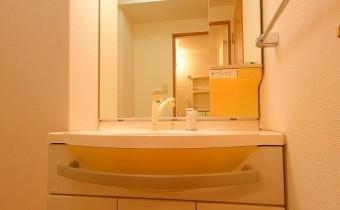 シャンプードレッサー ※室内写真は同マンション内の301号室のものです。