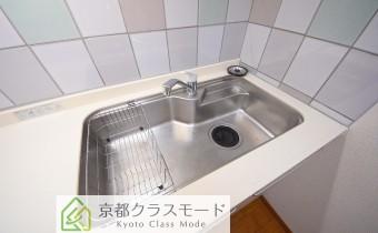 調理スペース&シンク ※室内写真は同マンション内の301号室のものです。
