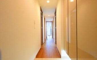 玄関 ※室内写真は113号室のものです。参考としてご覧ください。