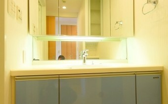 シャンプードレッサー ※室内写真は同マンション内の別のお部屋のものです。