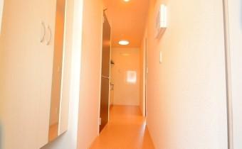 玄関 *写真はA棟201号室の参考画像です。
