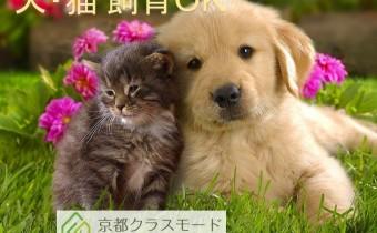 嬉しい「小型犬or猫飼育相談可」です♪